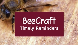 Bee Craft Timely Reminder 31st July 2019