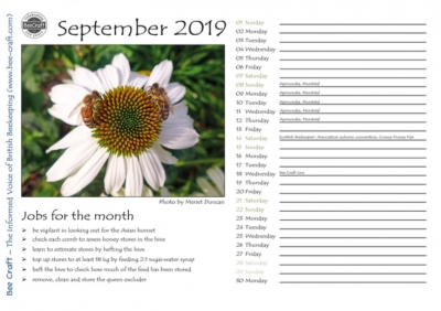 Gremlins - 2019 Bee Craft Calendar
