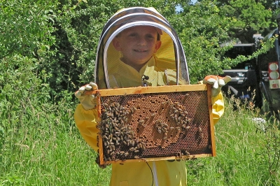 Britian's Youngest Ever Beekeeper