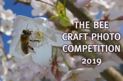 The Bee Craft Photo of the Month Competition, 2019