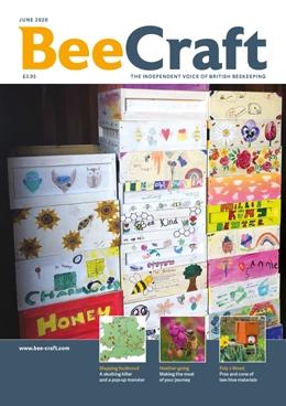 https://www.bee-craft.com/uploads/products/12954ddfaca4af87992ad9a1e399c38a/images/large/001_image.jpg