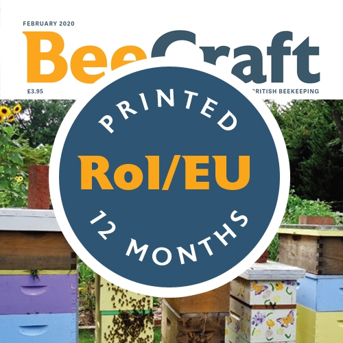 Bee Craft RoI & European Printed Subscription | 12 months