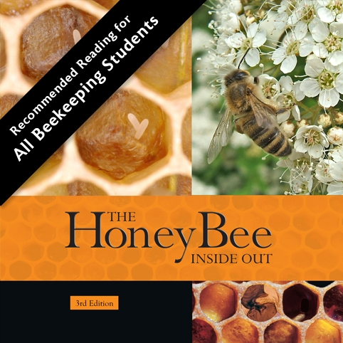 The Honey Bee Inside Out - 3rd Edition