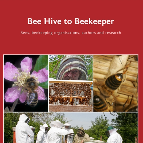 NEWLY RELEASED: Bee Hive to Beekeeper