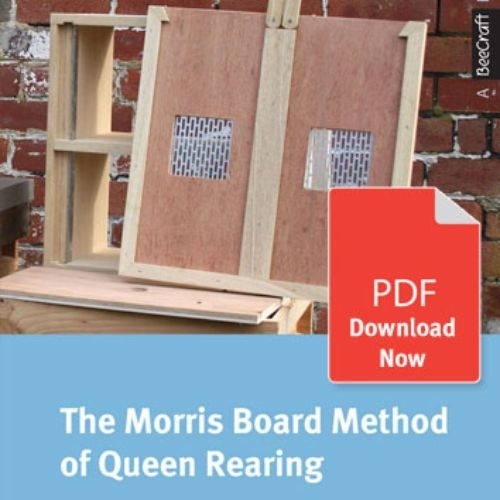 The Morris Board Method of Queen Rearing - Bee Craft Digital Download Booklet