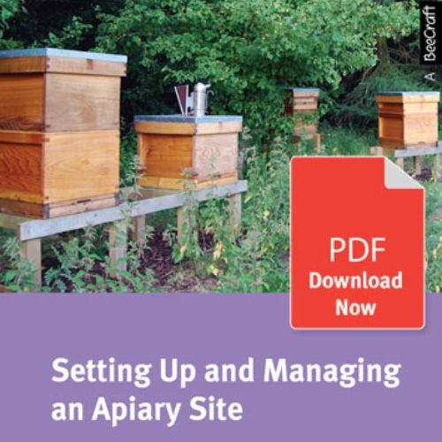 Setting up and Managing an Apiary Site - Bee Craft Digital Download Booklet