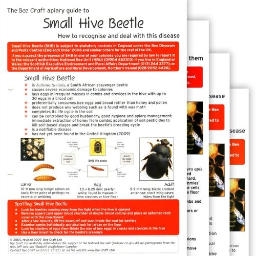 Bee Disease Recognition Guides