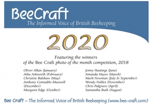 Bee Craft 2020 Calendar